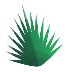 Palm tropical leaf icon cartoon style vector