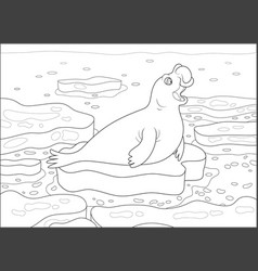 Sea elephant on an ice floe vector