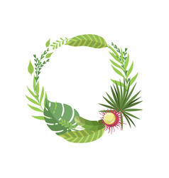 summer tropical leaves elegant frame with place vector image