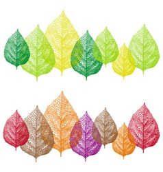 colorful vein leaves set vector image vector image