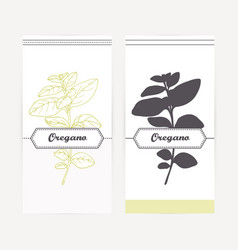 hand drawn oregano in outline and silhouette style vector image vector image