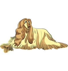 dog sketch vector image vector image