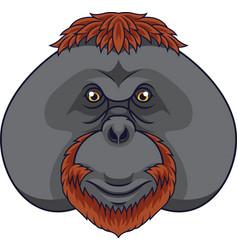 Cartoon orangutan head mascot vector