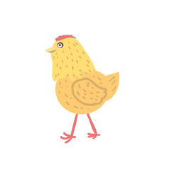 chick hand drawn vector image