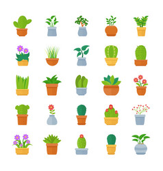 Houseplants flat icon pack vector
