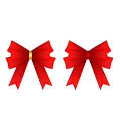 Red ribbon tied in a bow isolated on white vector