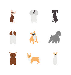 Cartoon pinscher and dogs icon set flat style vector