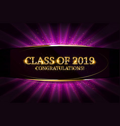 class of 2019 congratulations vector image