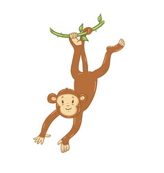 cute monkey isolated on a white background vector image