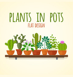 flat cactuses and home plantas concept vector image