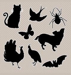 set animals silhouettes cat bird spider vector image