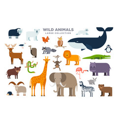 the large set of wild animals in flat design vector image