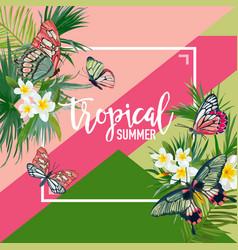 tropical flowers summer design with butterflies vector image