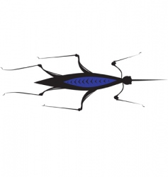 water strider vector image vector image