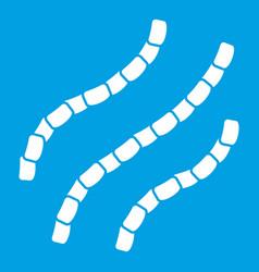 escherichia coli icon white vector image