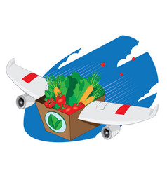 Airplane winged carton full of healthy food vector