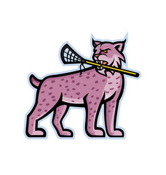 bobcat or lynx lacrosse mascot vector image