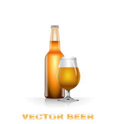 Light beer bottle and glass vector