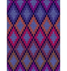Seamless Ornamental Knitted Pattern vector image