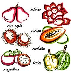thai fruit2 vector image