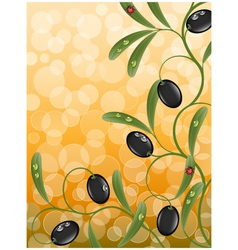 floral background with olive branch vector image