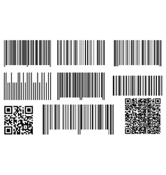bar codes and qr codes vector image vector image