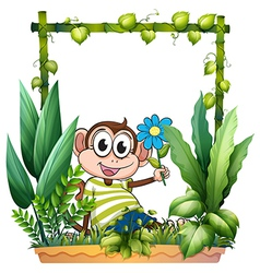 A monkey holding a flower vector image