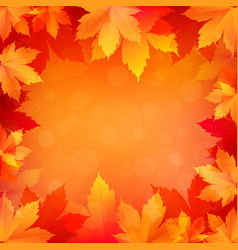 Autumn fall background with bright golden maple vector