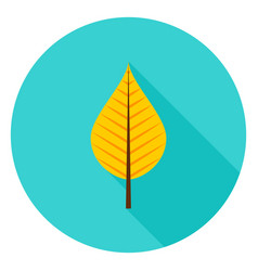 autumn leaf circle icon vector image