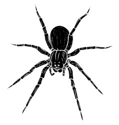 black silhouette spider steed crossbow scary vector image