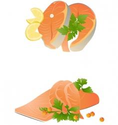 fresh salmon steak vector image