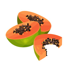 Halved papaya fruit showing orange flesh and vector