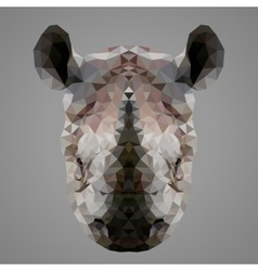 Rhinoceros low poly portrait vector image