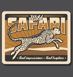 Safari cheetah or leopard hunting poster vector