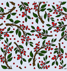 Seamless pattern with cranberries vector