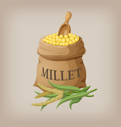 an image of raw yellow millets in a bag vector image vector image