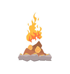 campfire bonfire surrounded by stones cartoon vector image