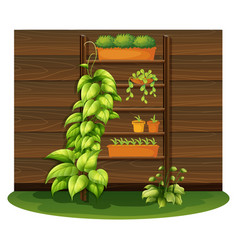 Gardening scene with flowerpots on shelves vector