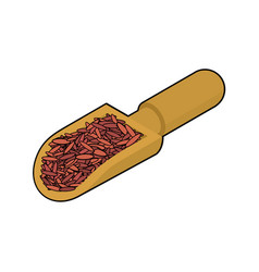 Red rice in wooden scoop isolated groats in wood vector