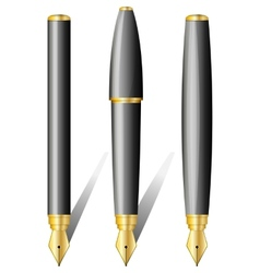 Black pen isolated on the white background vector image