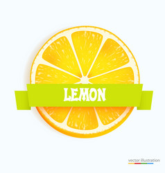 fresh lemon slice with stripe vector image