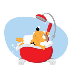 funny dog taking a bath - pet grooming vector image