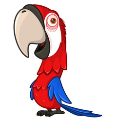 funny red parrot with a large beak vector image