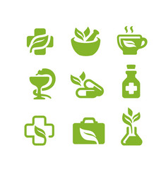 Herbal natural medicine vector
