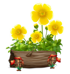 Yellow flowers and wooden log on white background vector