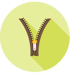 zipper i vector image