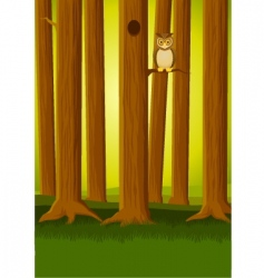 owl in the forest vector image vector image