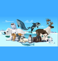 Arctic animals cartoon template vector