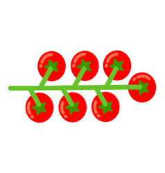 bunch cherry tomatoes flat icon isolated vector image