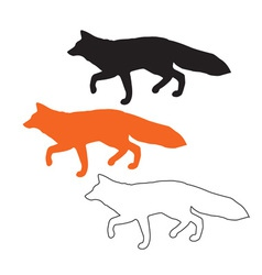 Foxes vector